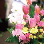 花の種類だけではなく、色でも季節感やイメージを作れます!